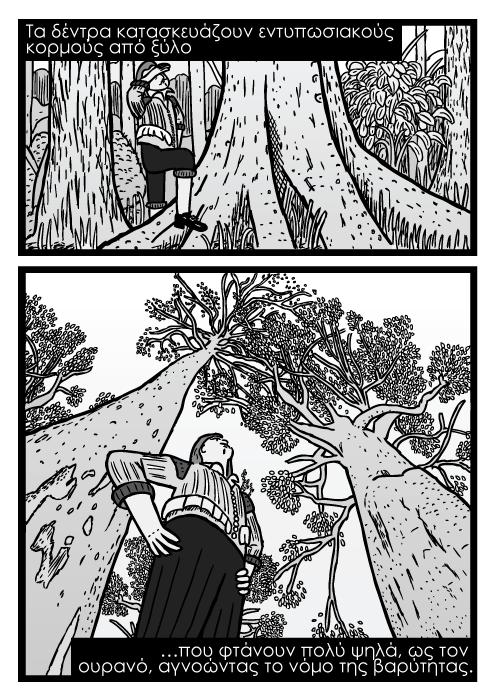 Σκίτσο άντρα κάτω από δέντρο με λήψη από χαμηλή γωνία, σκίτσα με κορμούς δέντρων. Τα δέντρα κατασκευάζουν εντυπωσιακούς κορμούς από ξύλο που φτάνουν πολύ ψηλά, ως τον ουρανό, αγνοώντας το νόμο της βαρύτητας.