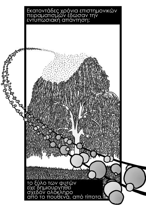 Σκίτσο με άτομα υδρογόνου οξυγόνου από δέντρα, μόρια διοξειδίου του άνθρακα. Εκατοντάδες χρόνια επιστημονικών πειραματισμών έδωσαν την εντυπωσιακή απάντηση: το ξύλο των φυτών είχε δημιουργηθεί σχεδόν ολόκληρο από το πουθενά, από τίποτα.