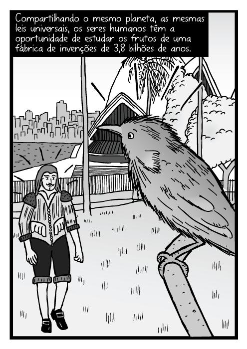Cartum pássaro em galho de árvore perto da Sydney Opera House. Desenho homem surpreso na Baía de Sydney. Compartilhando o mesmo planeta, as mesmas leis universais, os seres humanos têm a oportunidade de estudar os frutos de uma fábrica de invenções de 3,8 bilhões de anos.