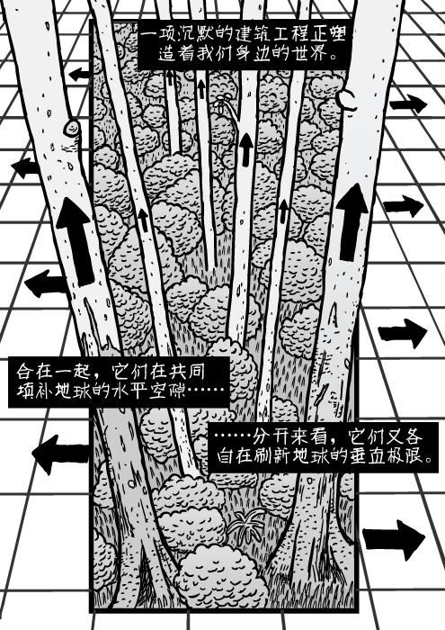 森林网格图。树木和箭头卡通。一项沉默的建筑工程正塑造着我们身边的世界。 合在一起,它们在共同填补地球的水平空隙…… ……分开来看,它们又各自在刷新地球的垂直极限。