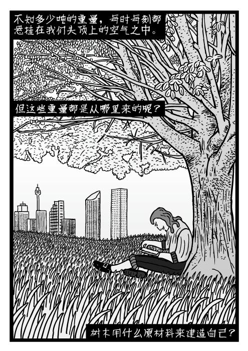 人在树下读书的卡通。手绘的田野上的荒草。不知多少吨的重量,每时每刻都悬挂在我们头顶上的空气之中。 但这些重量都是从哪里来的呢? 树木用什么原材料来建造自己?