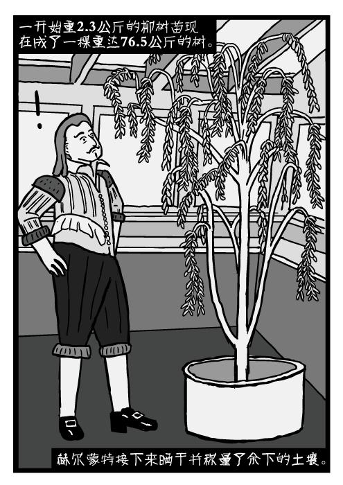 让·巴普蒂斯塔·范·赫尔蒙特的卡通。赫尔蒙特的柳树。一开始重2.3公斤的柳树苗现在成了一棵重达76.5公斤的树。 赫尔蒙特接下来晒干并称量了余下的土壤。