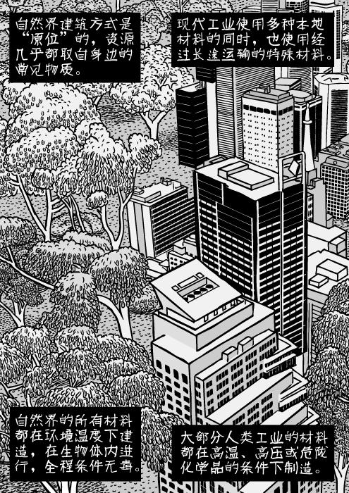 """城市与自然界的景观。摩天大楼和疏林地相接。写字楼和森林。城市树木俯瞰。自然界建筑方式是""""原位""""的,资源几乎都取自身边的常见物质。现代工业使用多种本地材料的同时,也使用经过长途运输的特殊材料。自然界的所有材料都在环境温度下建造,在生物体内进行,全程条件无毒。大部分人类工业的材料都在高温、高压或危险化学品的条件下制造。"""
