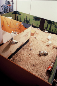 Photo of original Rat Park apparatus. Portrait view of the enclosure used in the Canadian drug experiments.