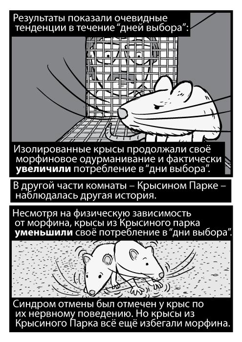 """Карикатурная чёрно-белая крыса в клетке, исследователь заглядывает внутрь. Результаты показали очевидные тенденции в течение """"дней выбора"""": Изолированные крысы продолжали своё морфиновое одурманивание и фактически увеличили потребление в """"дни выбора"""". В другой части комнаты – Крысином Парке – наблюдалась другая история. Несмотря на физическую зависимость от морфина, крысы из Крысиного парка уменьшили своё потребление в """"дни выбора"""". Синдром отмены был отмечен у крыс по их нервному поведению. Но крысы из Крысиного Парка всё ещё избегали морфина."""