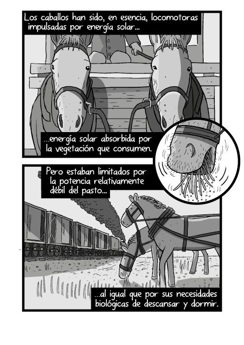 Tira cómica blanco y negro de caballos de tiro. Los caballos son, en esencia, locomotoras impulsadas por energía solar absorbida de la vegetación que consumen. Pero limitados por la escasa potencia del pasto al igual que por sus necesidades biológicas de descansar y dormir.