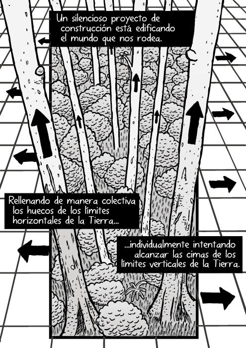 Dibujo de una red forestal. Dibujo de flechas sobre árboles. Un silencioso proyecto de construcción está edificando el mundo que nos rodea. Rellenando de manera colectiva los huecos de los límites horizontales de la Tierra, individualmente intentando alcanzar las cimas de los límites verticales de la Tierra.
