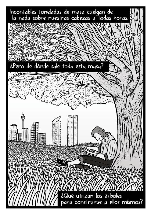 Dibujo de un hombre leyendo bajo un árbol. Dibujo de un campo de hierba. Incontables toneladas de masa cuelgan de la nada sobre nuestras cabezas a todas horas. ¿Pero de dónde sale toda esta masa? ¿Qué utilizan los árboles para construirse a ellos mismos?