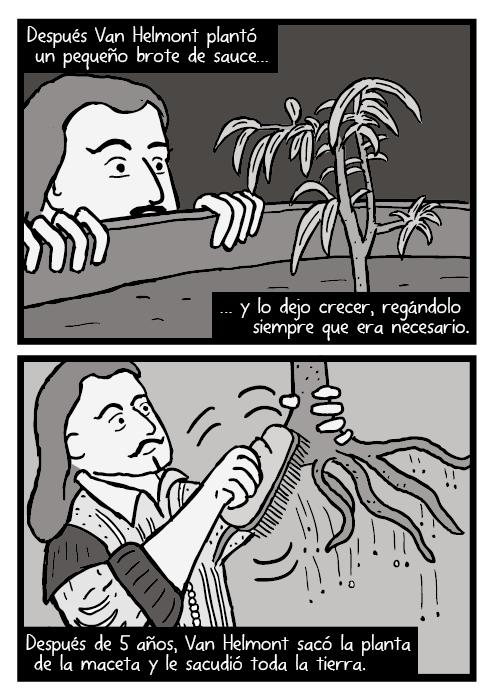 Dibujo de Jean Baptista. Dibujo sacudiendo la tierra de un sauce. Después Van Helmont plantó un pequeño brote de sauce y lo dejo crecer, regándolo siempre que era necesario. Después de 5 años, Van Helmont sacó la planta de la maceta y le sacudió toda la tierra.