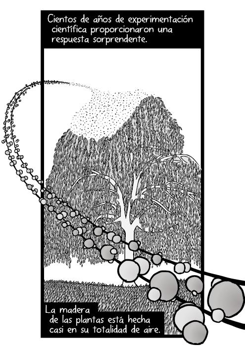 Dibujo de los átomos de oxígeno, carbono e hidrogeno. Moléculas de dióxido de carbono. Cientos de años de experimentación científica proporcionaron una respuesta sorprendente. La madera de las plantas está hecha casi en su totalidad de aire.