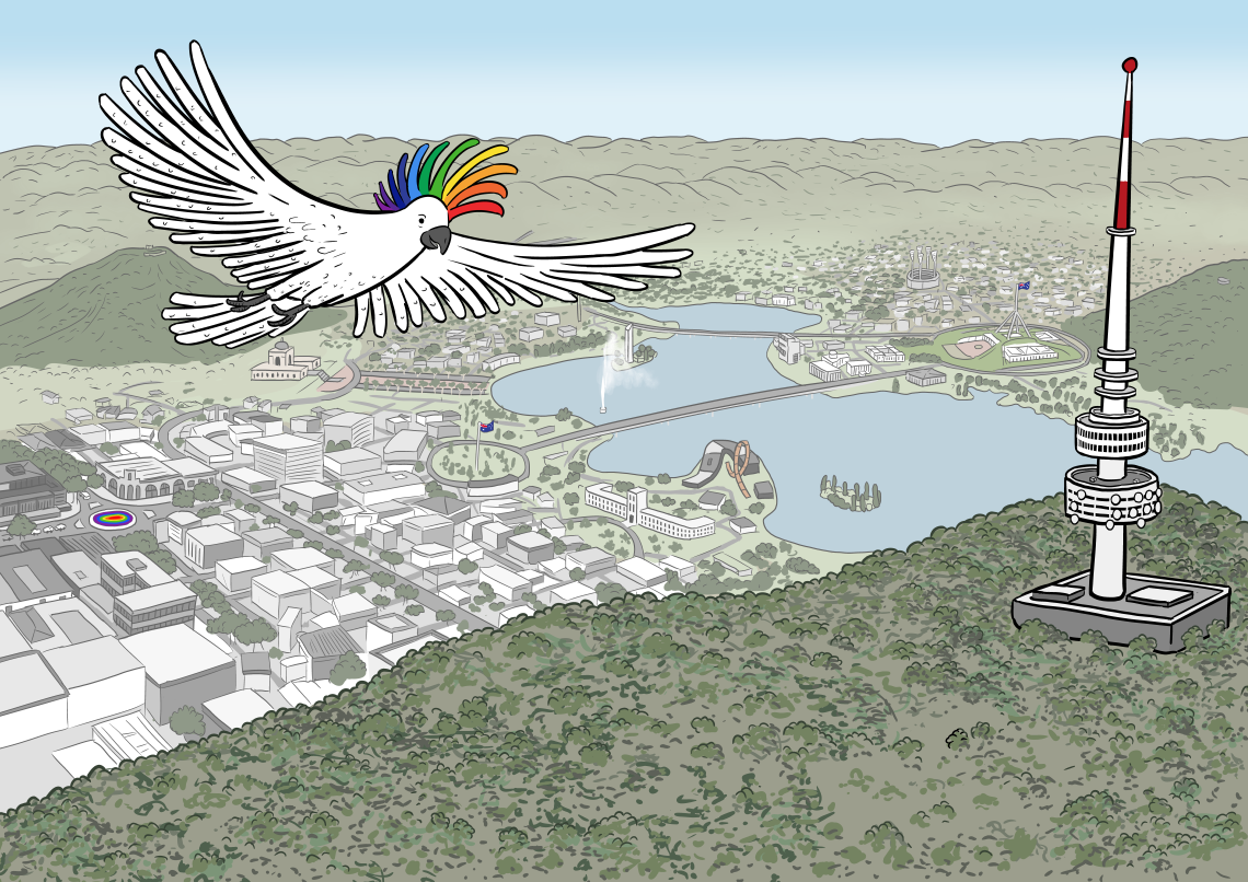 Rainbow-crested cockatoo flying above bird's eye view drawing of Canberra, Australia featuring Black Mountain Tower and Lake Burley Griffin aerial drawing
