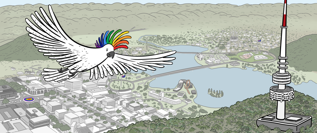 Rainbow-crested cockatoo above aerial view of Canberra illustration