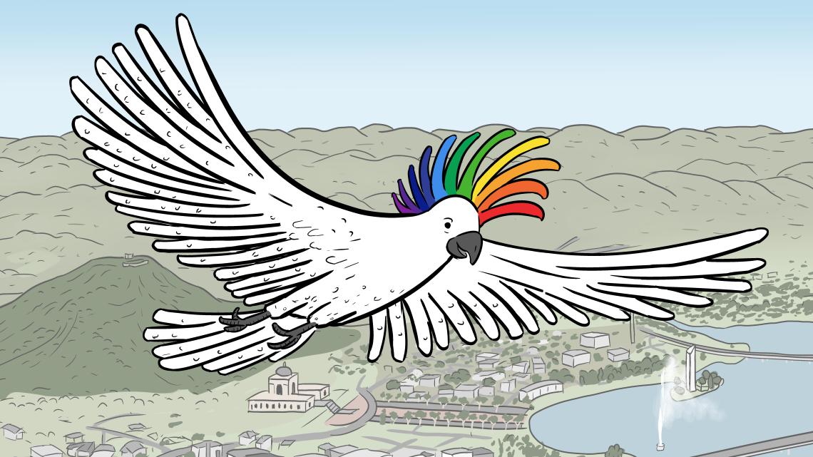 Cockatoo with rainbow crest on head