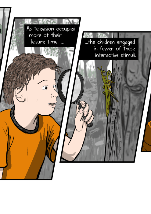 Drawing of boy holding a magnifying glass, looking at a praying mantis on a tree. As television occupied more of their leisure time, the children engaged in fewer of these interactive stimuli.
